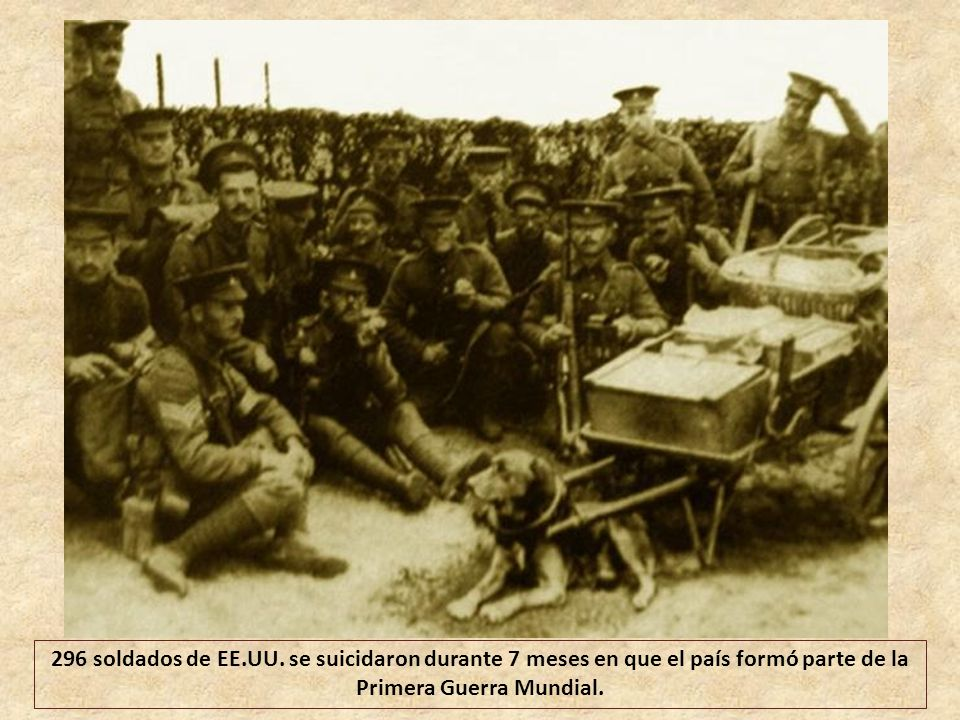 Austria-Hungría sufrieron el 90% de bajas de sus efectivos totales movilizados.