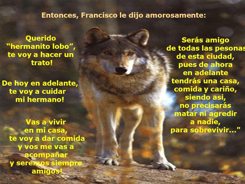 El hermanito lobo, entonces, delante de