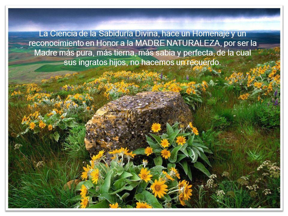 La Ciencia de la Sabiduría Divina, hace un Homenaje y un reconocimiento en Honor a la MADRE NATURALEZA, por ser la Madre más pura, más tierna, más sabia y perfecta, de la cual sus ingratos hijos, no hacemos un recuerdo.
