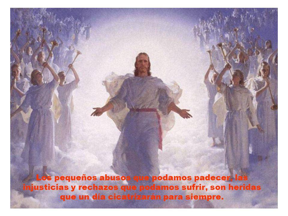 Seguir a Jesús es caminar hacia el Misterio de Dios que resucitará para siempre nuestras vidas.