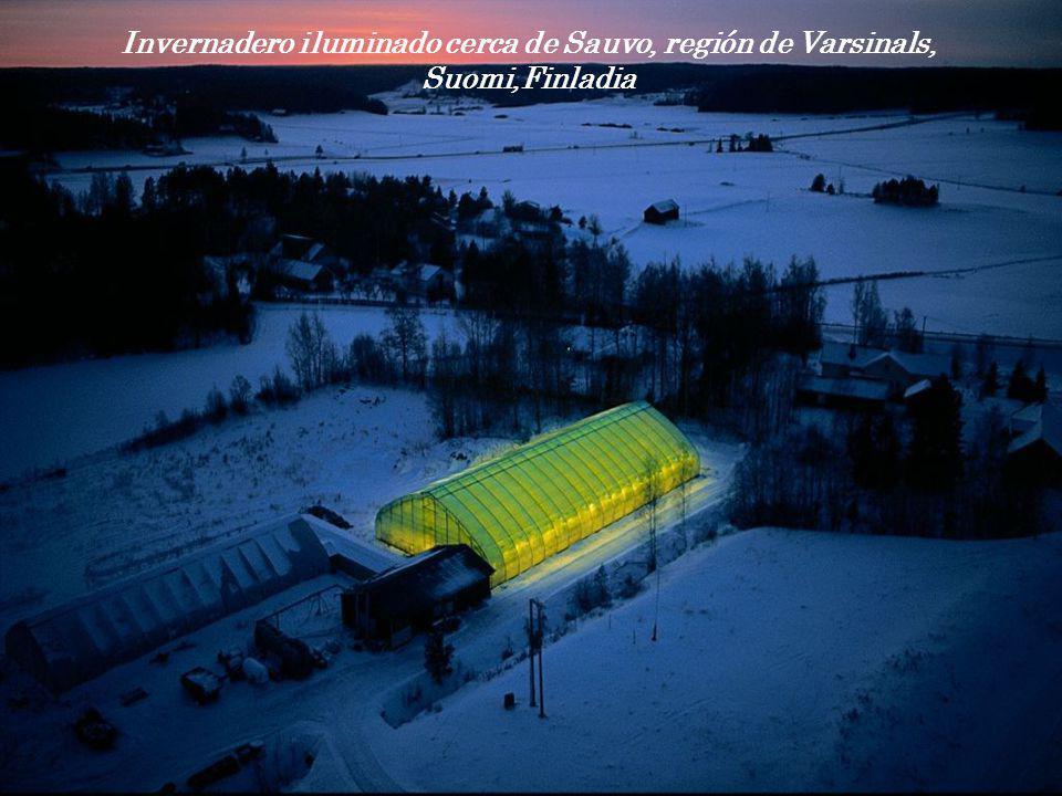 Invernadero iluminado cerca de Sauvo, región de Varsinals, Suomi,Finladia