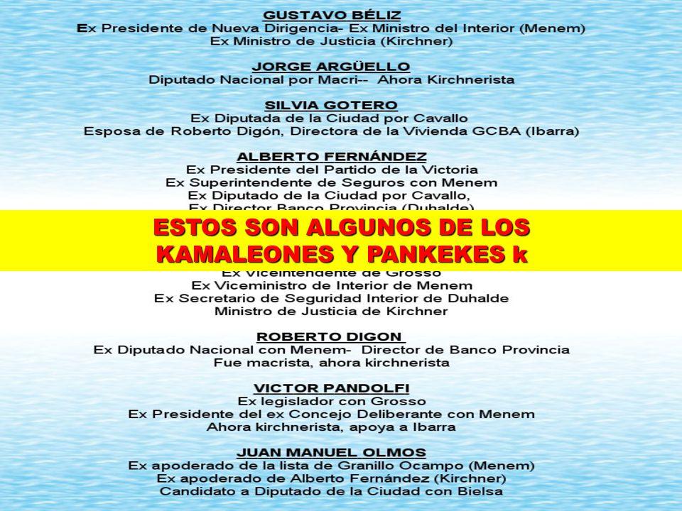 ESTOS SON ALGUNOS DE LOS KAMALEONES Y PANKEKES k