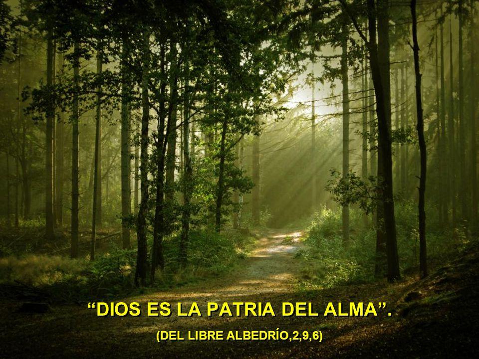 A DIOS NO LO VES. ÁMALO Y LO TIENES. (SERMÓN 34)