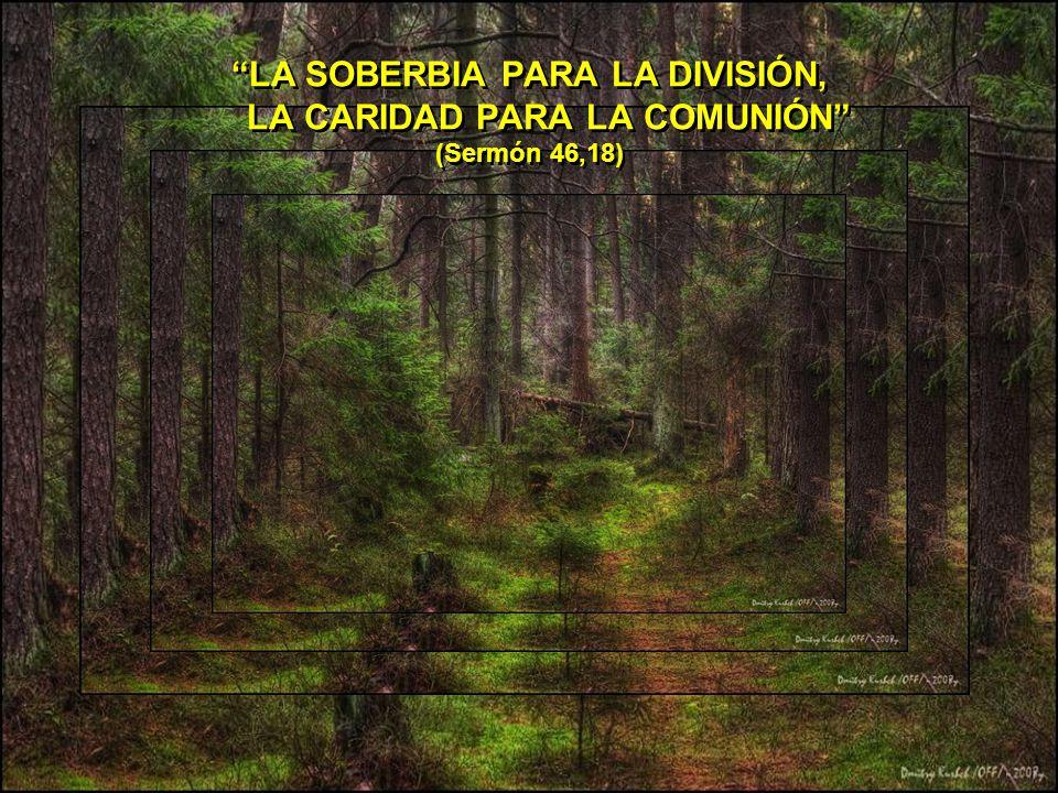 EL RICO LLENA EL ARCA DE MONEDAS Y EL ALMA DE PREOCUPACIONES. (SERMÓN, 60,21).