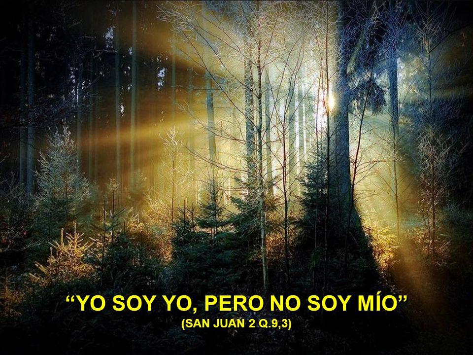 NADIE PIERDE LA FE SI NO LA DESPRECIA. (SALMO 55,19)
