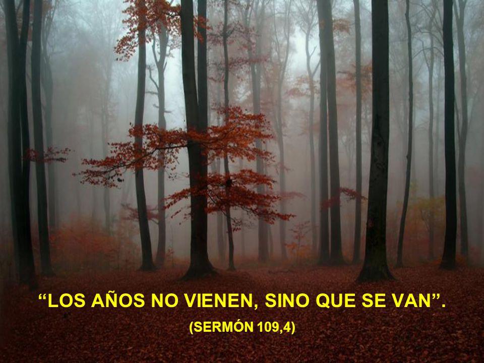 NO SE HACE DE CORAZÓN LO QUE NO SE HACE POR AMOR. (SALMO 77,10)