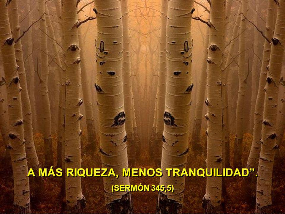A MÁS RIQUEZA, MENOS TRANQUILIDAD. (SERMÓN 345,5) A MÁS RIQUEZA, MENOS TRANQUILIDAD. (SERMÓN 345,5)