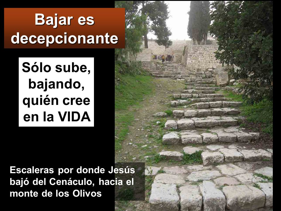 MONTE DE LOS OLIVOS Después de cantar el salmo, salieron para el monte de los Olivos.