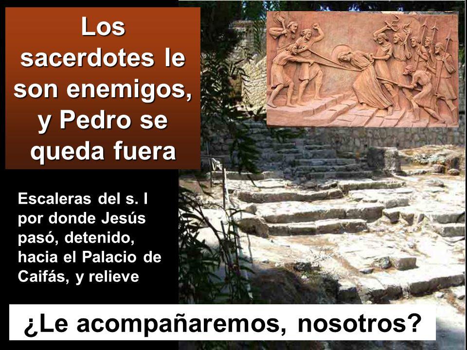 PALACIO CAIFÁS Condujeron a Jesús a casa del sumo sacerdote, y se reunieron todos los sumo sacerdotes y los ancianos y los escribas.