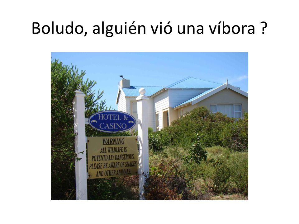 Boludo, alguién vió una víbora ?