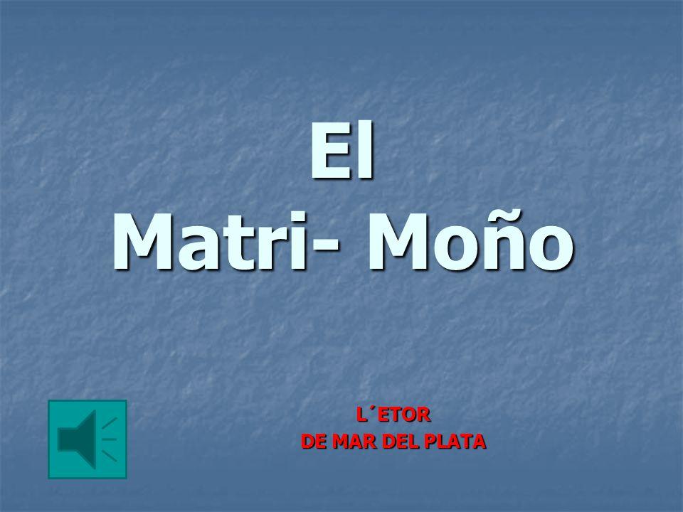 El Matri- Moño L´ETOR DE MAR DEL PLATA