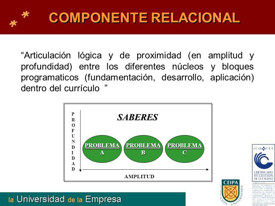 COMPONENTE RELACIONAL Articulación lógica y de proximidad (en amplitud y profundidad) entre los diferentes núcleos y bloques programaticos (fundamenta