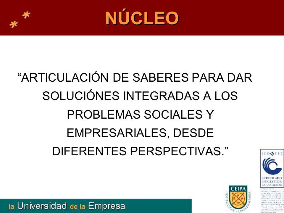 NÚCLEO ARTICULACIÓN DE SABERES PARA DAR SOLUCIÓNES INTEGRADAS A LOS PROBLEMAS SOCIALES Y EMPRESARIALES, DESDE DIFERENTES PERSPECTIVAS.