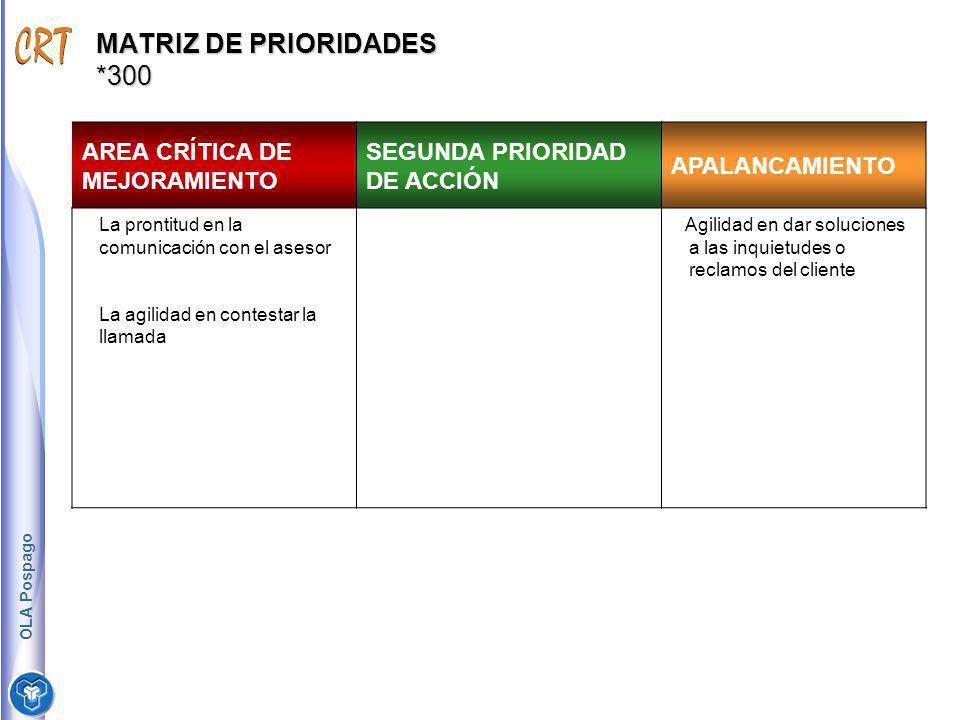 MATRIZ DE PRIORIDADES *300 AREA CRÍTICA DE MEJORAMIENTO SEGUNDA PRIORIDAD DE ACCIÓN APALANCAMIENTO La prontitud en la comunicación con el asesor La ag