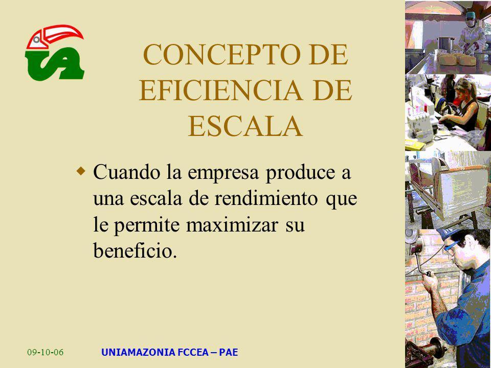 09-10-06UNIAMAZONIA FCCEA – PAE CONCEPTO DE EFICIENCIA DE ESCALA Cuando la empresa produce a una escala de rendimiento que le permite maximizar su ben
