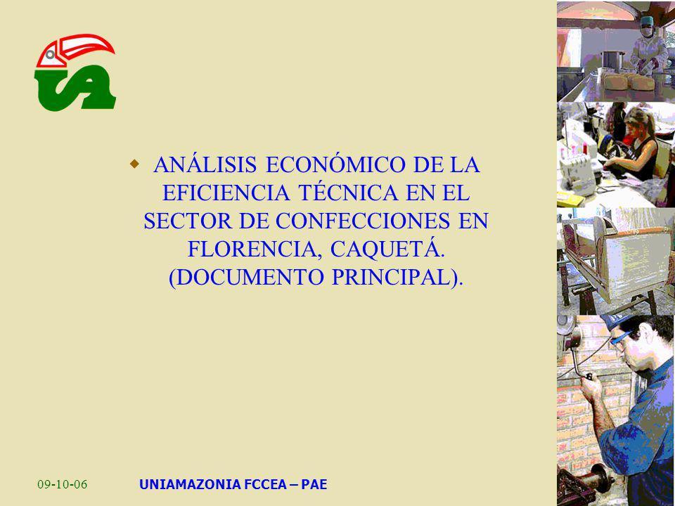09-10-06UNIAMAZONIA FCCEA – PAE ANÁLISIS ECONÓMICO DE LA EFICIENCIA TÉCNICA EN EL SECTOR DE CONFECCIONES EN FLORENCIA, CAQUETÁ. (DOCUMENTO PRINCIPAL).