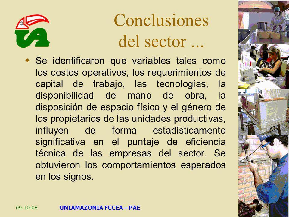 09-10-06UNIAMAZONIA FCCEA – PAE Conclusiones del sector... Se identificaron que variables tales como los costos operativos, los requerimientos de capi