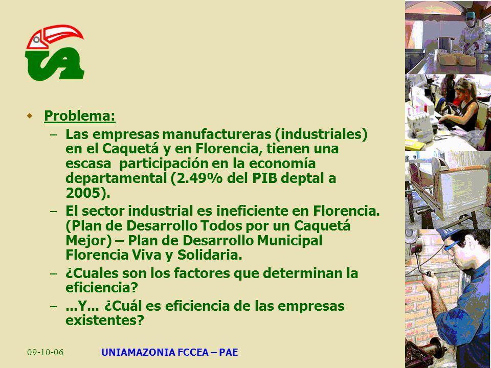 09-10-06UNIAMAZONIA FCCEA – PAE Problema: – Las empresas manufactureras (industriales) en el Caquetá y en Florencia, tienen una escasa participación e