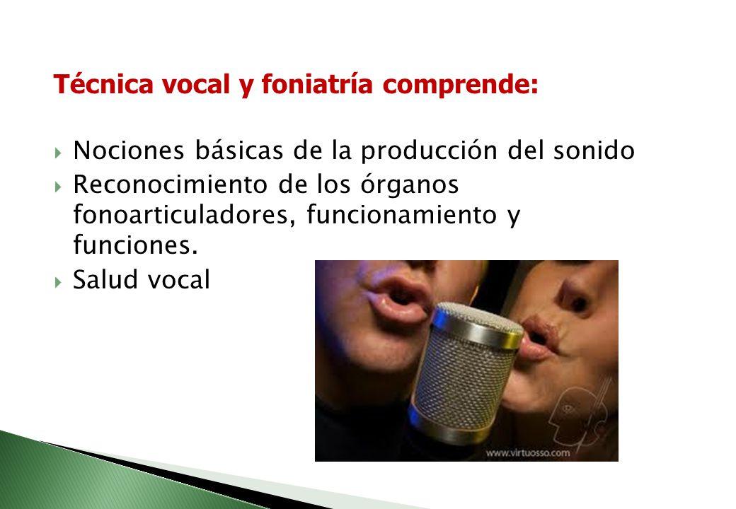 Apreciación y folclor comprende: Audiciones musicales Clasificación de los instrumentos musicales Identificación de los instrumentos