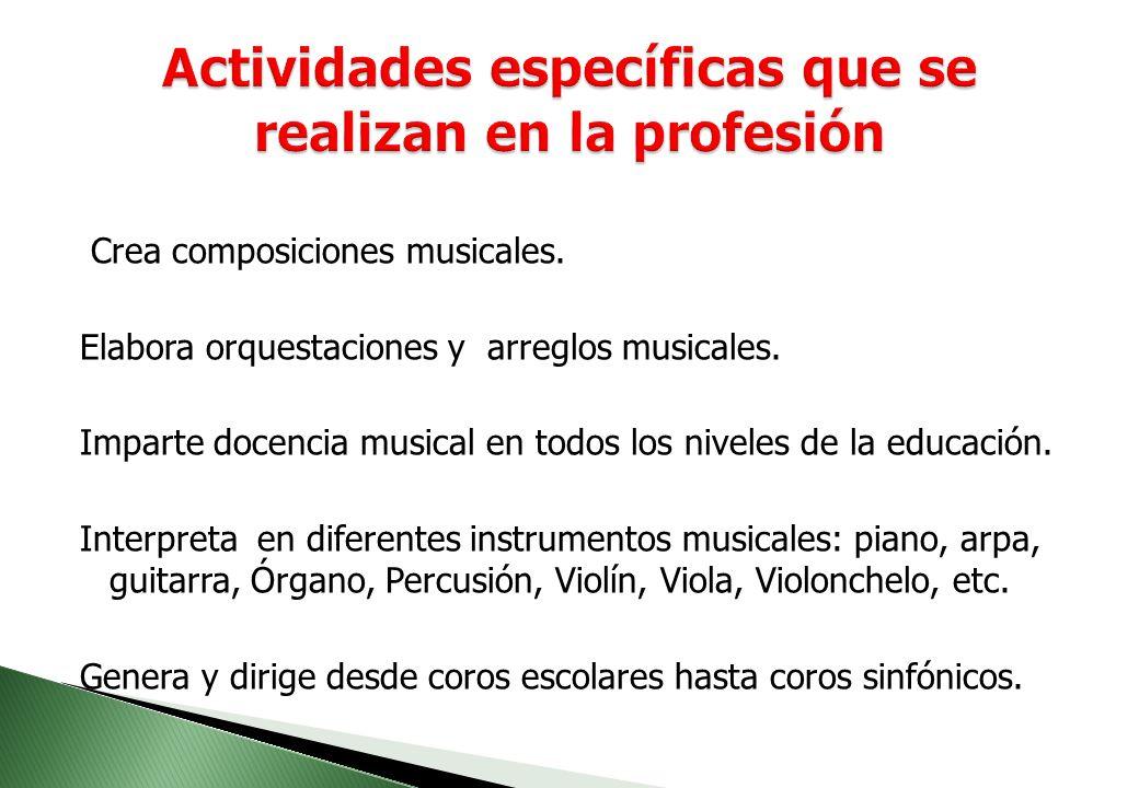 Crea composiciones musicales.Elabora orquestaciones y arreglos musicales.