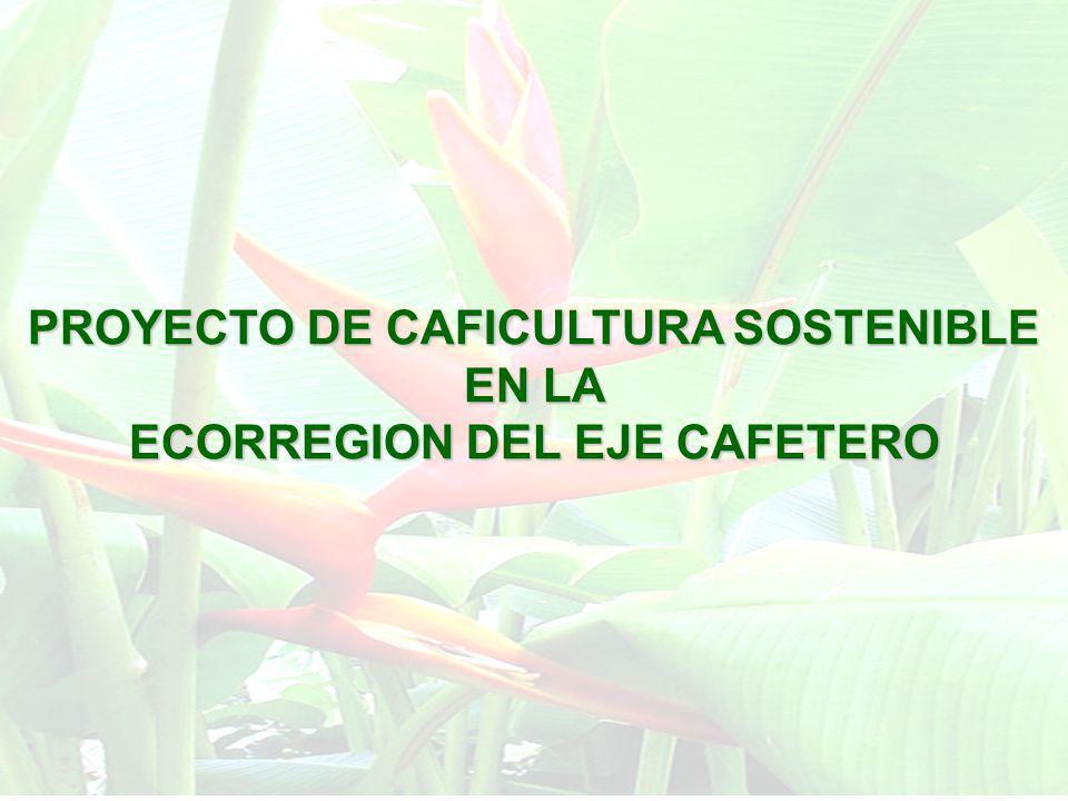 PROYECTO DE CAFICULTURA SOSTENIBLE EN LA ECORREGION DEL EJE CAFETERO Interés del MAVDT, CAR, Comités de cafeteros, gobernaciones, alcaldías, y otras organizaciones de la región centro occidente, en lograr alternativas de sostenibilidad mediante mejores esquemas de producción cafetera.