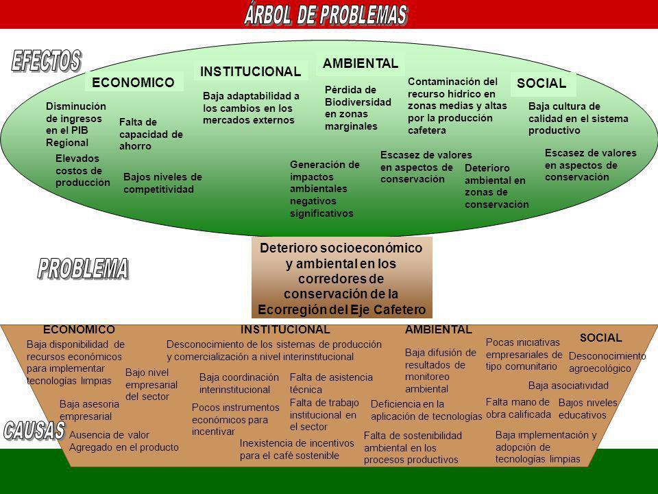 Pocas iniciativas empresariales de tipo comunitario Baja disponibilidad de recursos económicos para implementar tecnologías limpias Baja asesoria empr