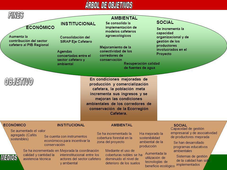 En condiciones mejoradas de producción y comercialización cafetera, la población meta incrementa sus ingresos y se mejoran las condiciones ambientales