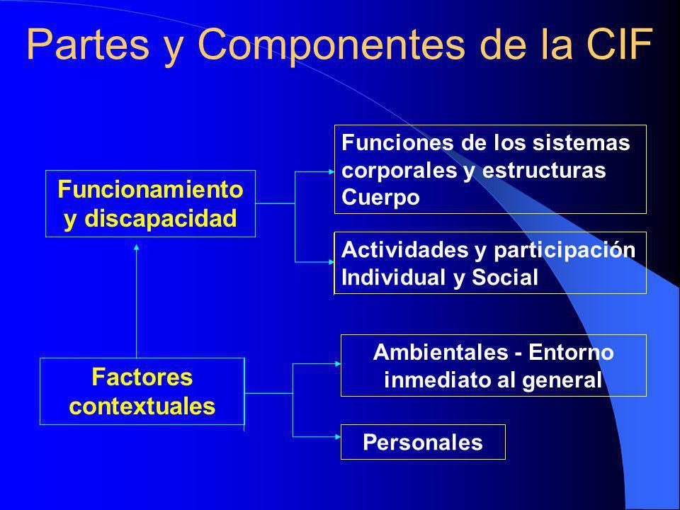 Partes y Componentes de la CIF Ambientales - Entorno inmediato al general Personales Funcionamiento y discapacidad Funciones de los sistemas corporales y estructuras Cuerpo Factores contextuales Actividades y participación Individual y Social