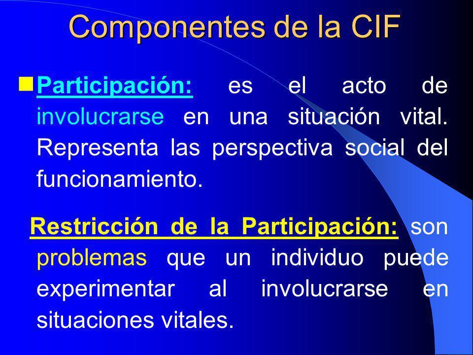 Participación: es el acto de involucrarse en una situación vital.