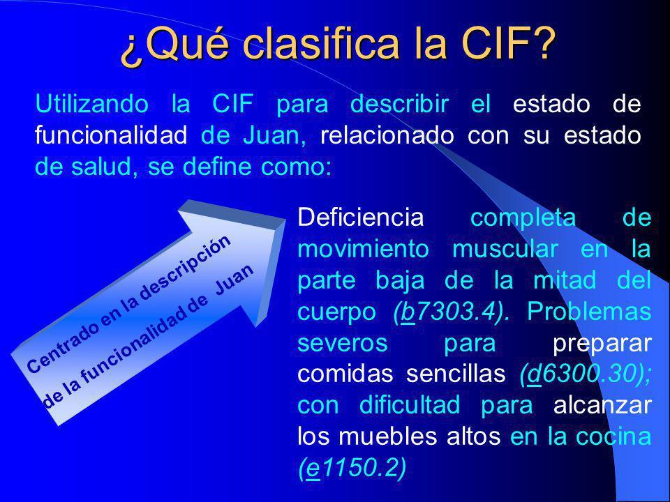 ¿Qué clasifica la CIF.