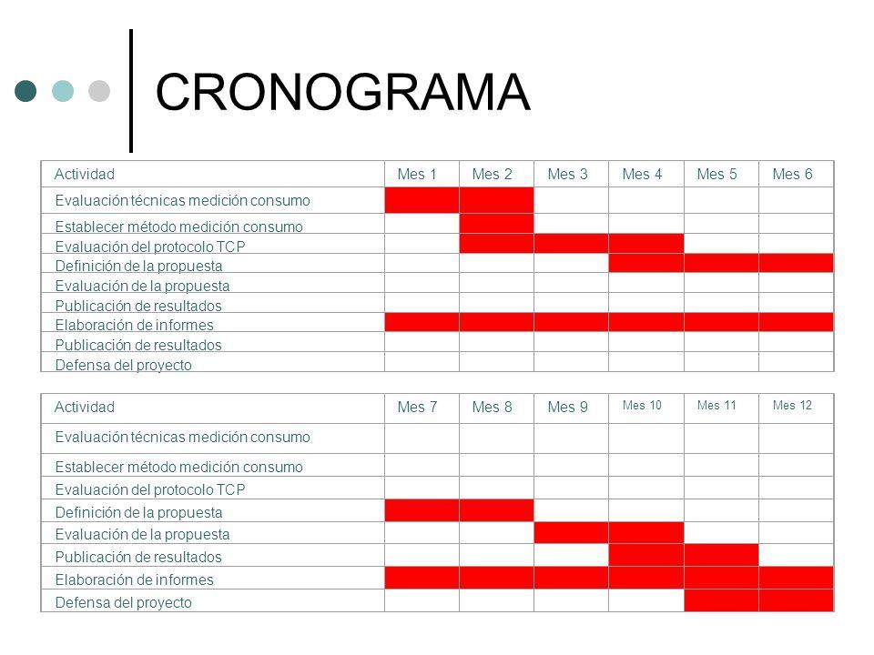 CRONOGRAMA ActividadMes 1Mes 2Mes 3Mes 4Mes 5Mes 6 Evaluación técnicas medición consumo Establecer método medición consumo Evaluación del protocolo TC