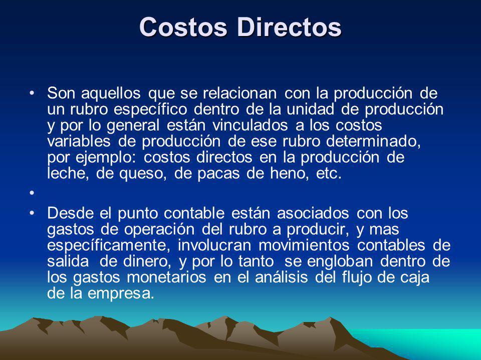Costos Directos Son aquellos que se relacionan con la producción de un rubro específico dentro de la unidad de producción y por lo general están vincu