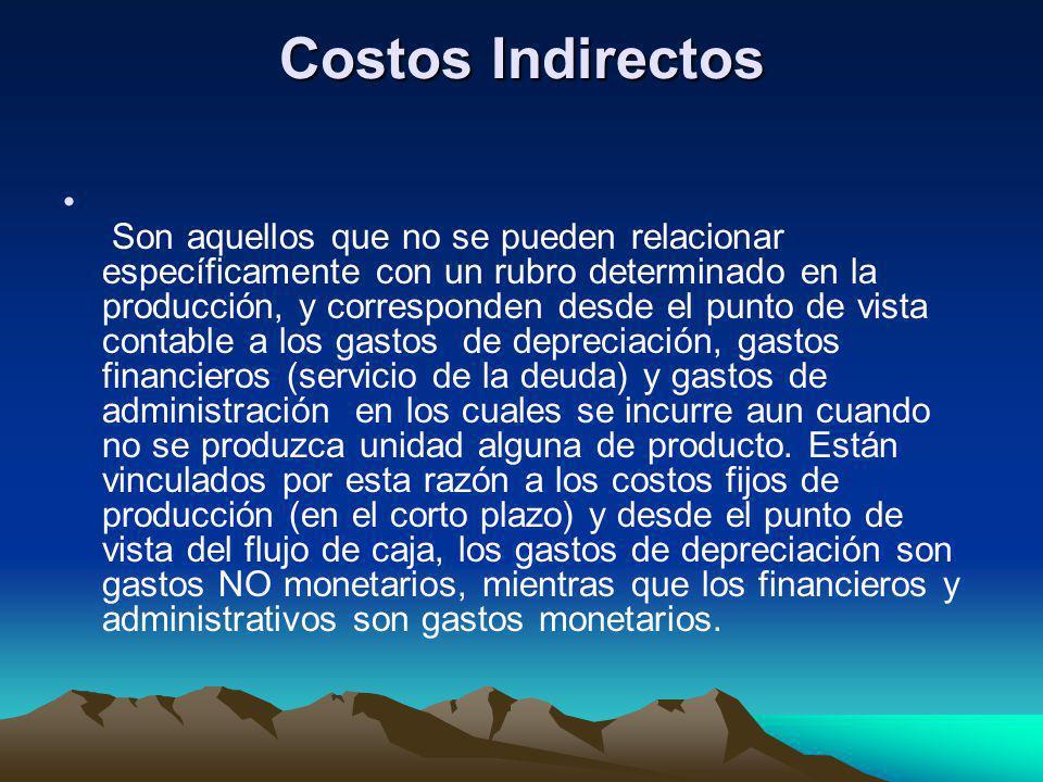 Costos Indirectos Son aquellos que no se pueden relacionar específicamente con un rubro determinado en la producción, y corresponden desde el punto de