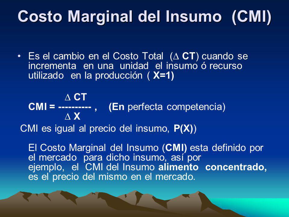 Costo Marginal del Insumo (CMI) Es el cambio en el Costo Total ( CT) cuando se incrementa en una unidad el insumo ó recurso utilizado en la producción