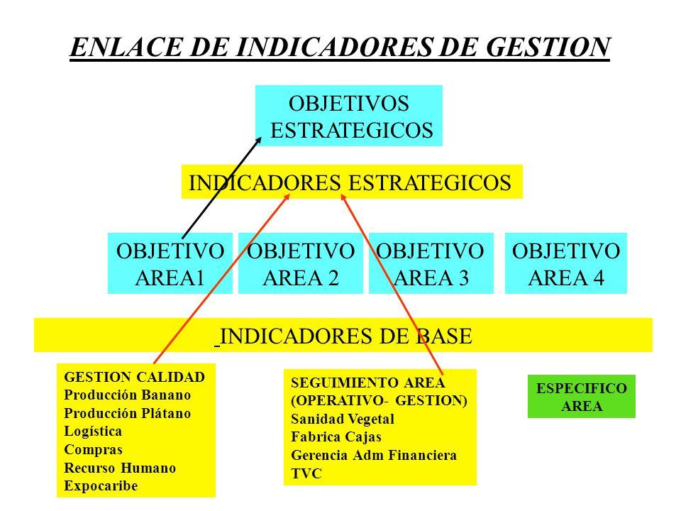 ENLACE DE INDICADORES DE GESTION OBJETIVO AREA1 OBJETIVO AREA 4 OBJETIVO AREA 3 OBJETIVO AREA 2 OBJETIVOS ESTRATEGICOS INDICADORES DE BASE GESTION CAL