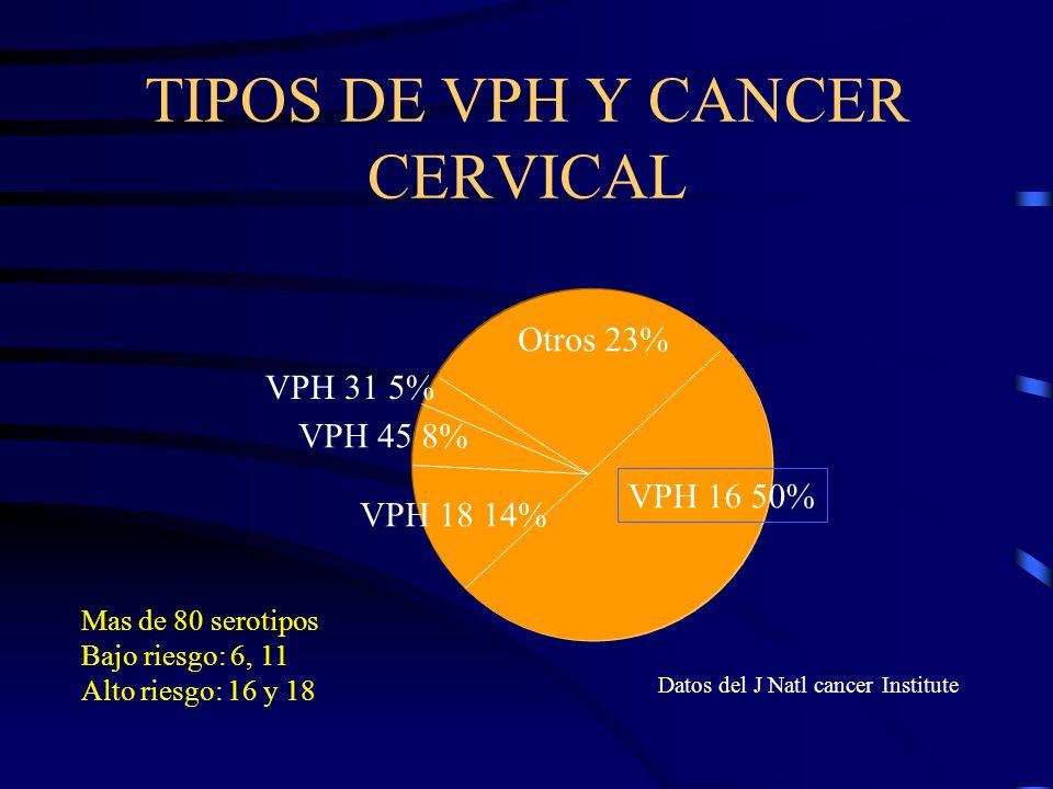 TIPOS DE VPH Y CANCER CERVICAL VPH 16 50% Otros 23% VPH 18 14% VPH 45 8% VPH 31 5% Mas de 80 serotipos Bajo riesgo: 6, 11 Alto riesgo: 16 y 18 Datos d