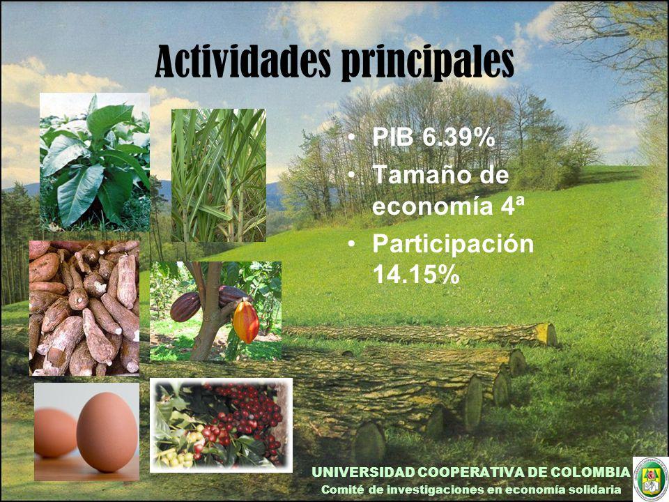 Actividades principales PIB 6.39% Tamaño de economía 4ª Participación 14.15% UNIVERSIDAD COOPERATIVA DE COLOMBIA Comité de investigaciones en economía solidaria