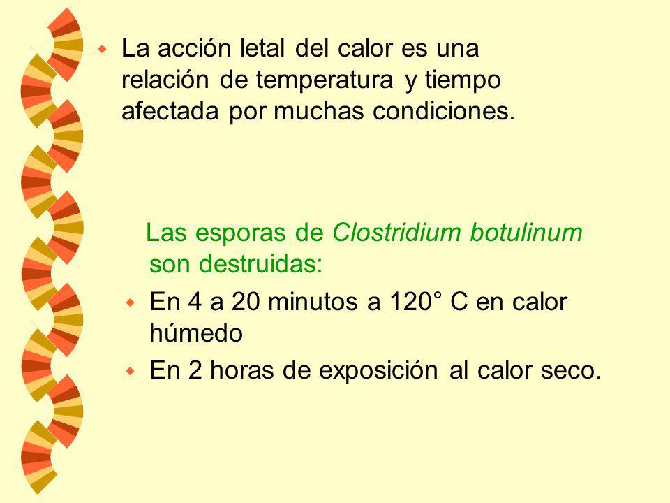 w La alta temperatura combinada con un alto grado de humedad es uno de los métodos más efectivos para destruir microorganismos. w El calor húmedo mata