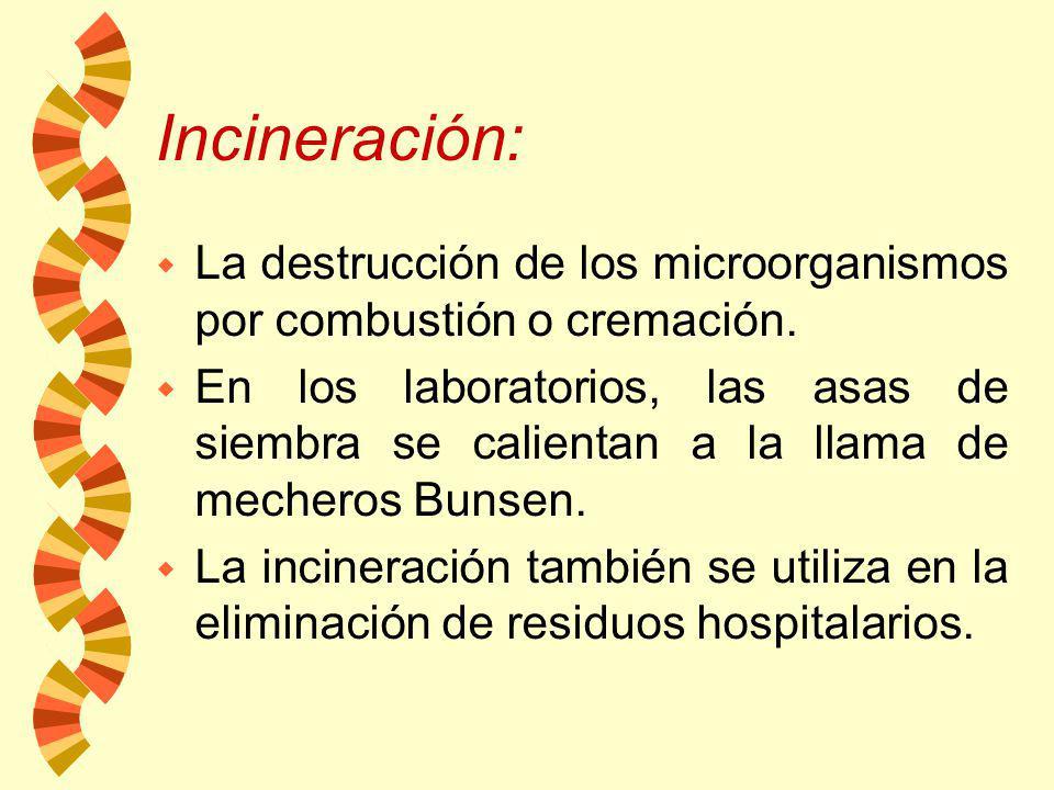 Horno : w La esterilización seca se logra a 160-170 °C por 2-3 hrs. w El calor seco se utiliza principalmente para esterilizar material de vidrio y ot
