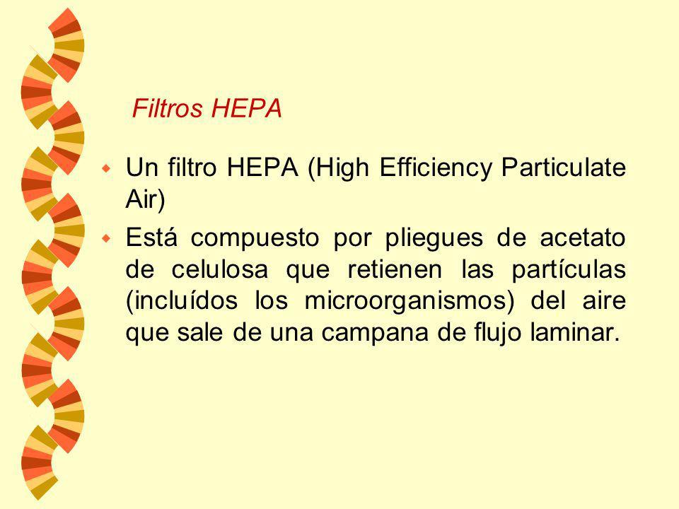 Existen tres tipos básicos de filtros: w Filtros profundos o Filtros de profundidad: consisten de un material fibroso o granular prensado, plegado, ac