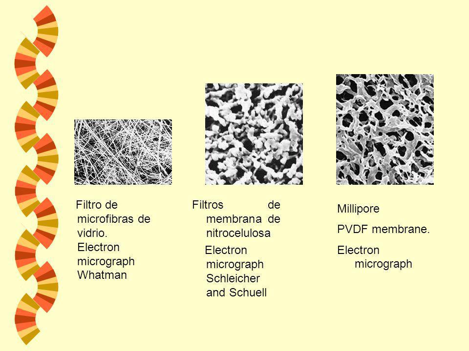 Los filtros de membrana se utilizan en: w La esterilización de líquidos w En el análisis microbiológico de aguas ya que concentran los microorganismos