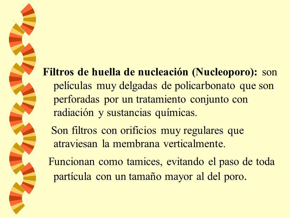 Filtros de membrana de nitrocelulosa Electron micrograph Schleicher and Schuell Millipore PVDF membrane. Electron micrograph Filtro de microfibras de