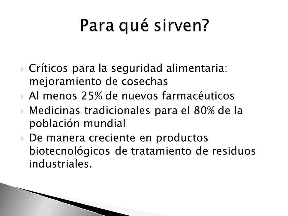 Críticos para la seguridad alimentaria: mejoramiento de cosechas Al menos 25% de nuevos farmacéuticos Medicinas tradicionales para el 80% de la poblac