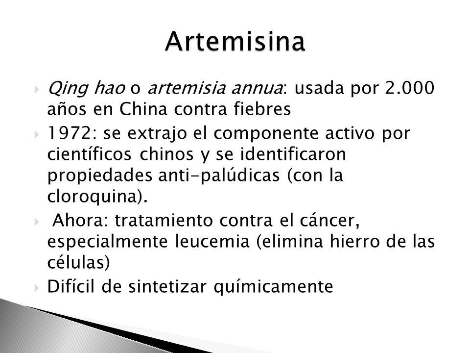 Qing hao o artemisia annua: usada por 2.000 años en China contra fiebres 1972: se extrajo el componente activo por científicos chinos y se identificar