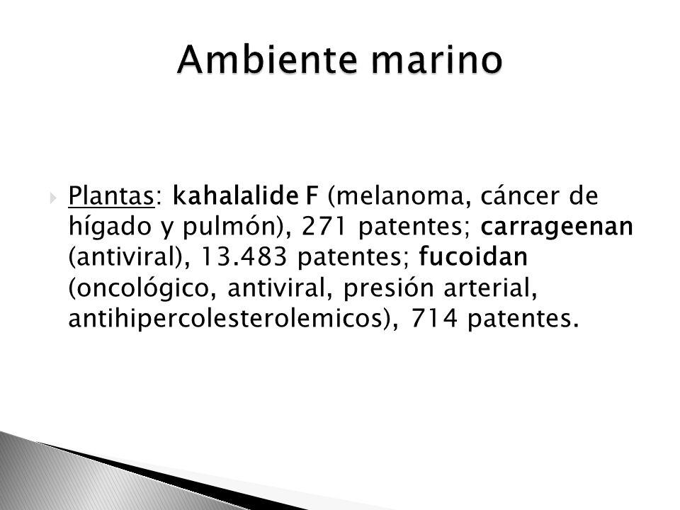 Plantas: kahalalide F (melanoma, cáncer de hígado y pulmón), 271 patentes; carrageenan (antiviral), 13.483 patentes; fucoidan (oncológico, antiviral,