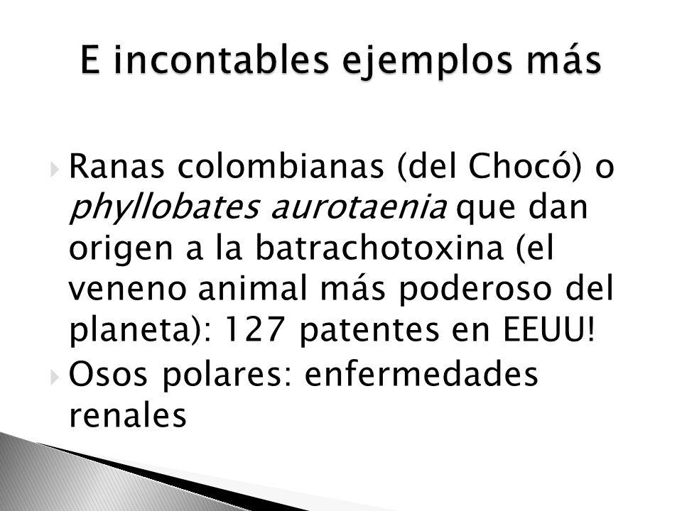 Ranas colombianas (del Chocó) o phyllobates aurotaenia que dan origen a la batrachotoxina (el veneno animal más poderoso del planeta): 127 patentes en