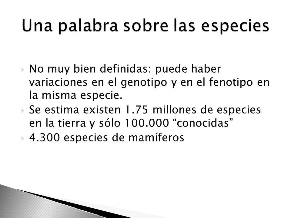 Colombia:14/278 Ecuador: 2/67 Perú: 1/115 Costa Rica: 1/279 Cuba: 6/74 Venezuela: 4/804 Brasil: 52/ 2.876 patentes 424: drogas + comp.