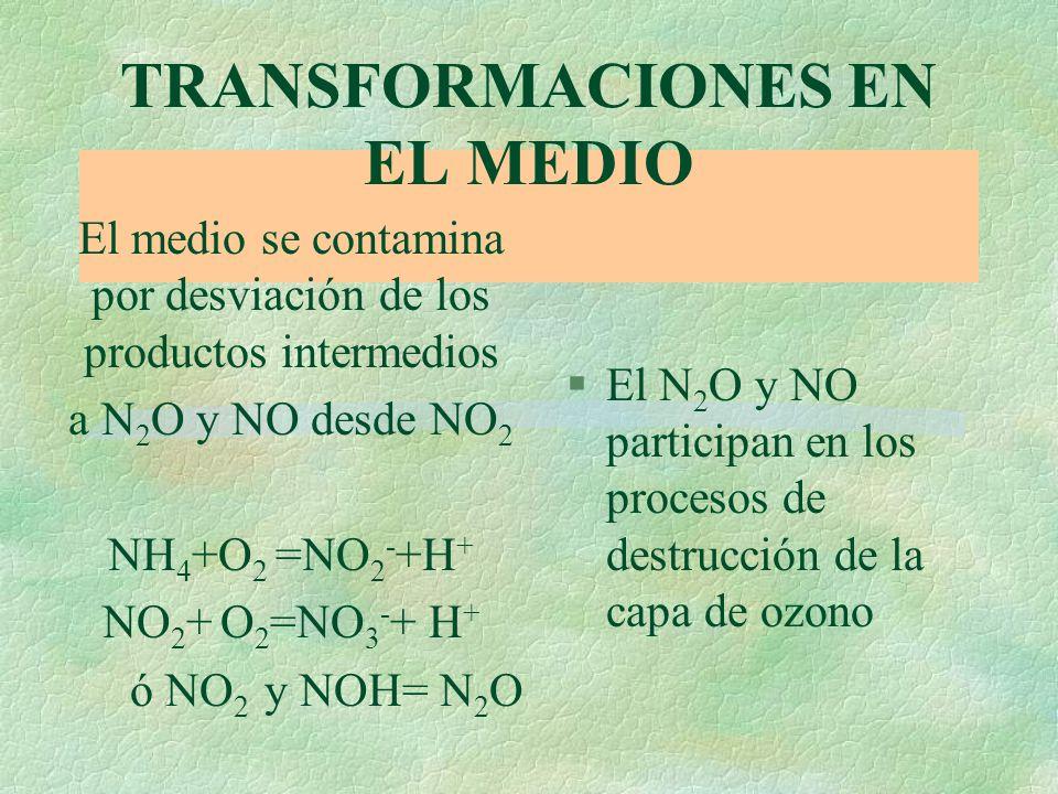 §Temperatura: óptima entre 30 y 35 o. Bajo condiciones desfavorables no impide la acumulación de NH 4 + en el suelo §la materia organica del suelo afe