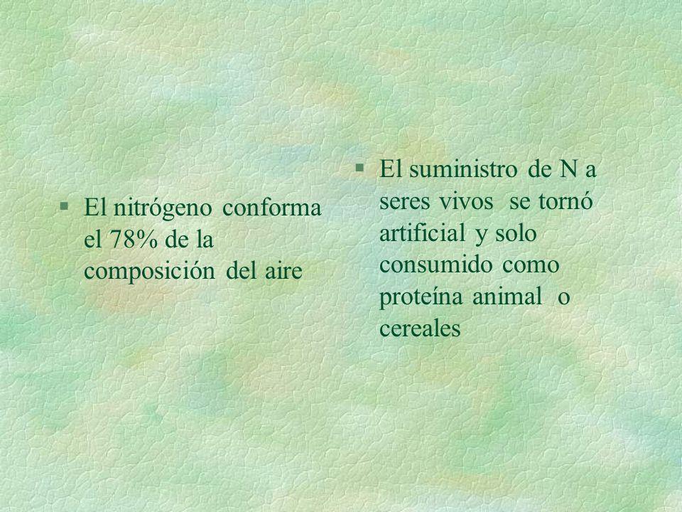 TRANSFORMACIONES EN EL MEDIO El medio se contamina por desviación de los productos intermedios a N 2 O y NO desde NO 2 NH 4 +O 2 =NO 2 - +H + NO 2 + O