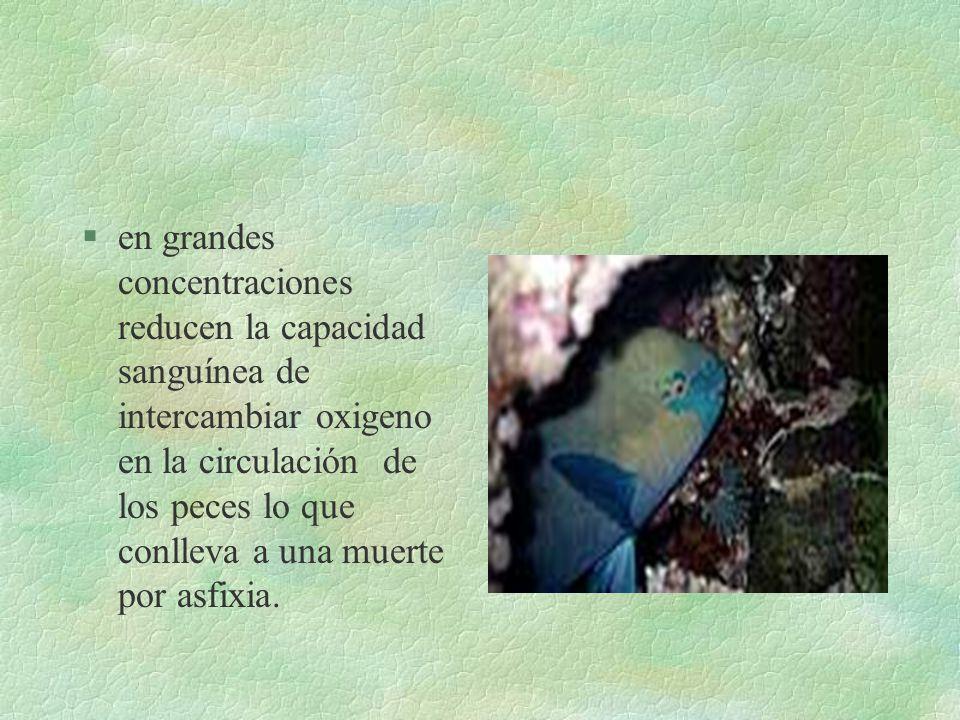 EN LAS AGUAS... §Los NO 3 - la vegetación acuática y producen la eutroficación §la alta dosificacion de fertilizantes daña los acuiferos y los saliniz
